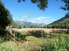 Seyne les Alpes, Alpes de Haute-Provence, dept 04.