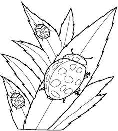 three ladybug coloring pages - Ladybug Coloring Page 2