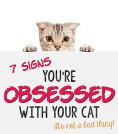 "Are you obsessed with your cat? Take a quick test. If every other photo on your phone is of your cat, you might be in the obsessive zone. Are you an insomniac without your cat in the bed? How about Facebook— does your cat have its own page? Maybe you take amazing care of your pet and forget to schedule your own checkup or buy your favorite food. Read eBay's checklist of 7 signs you're obsessed with your cat. And remember— obsessed just means ""seriously in love."""