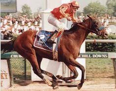 Real Quiet,1998 Kentucky Derby winner.