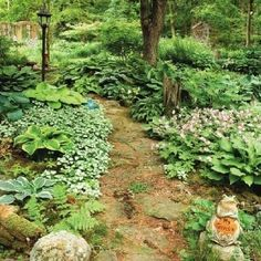 Hosta companions (from Garden Making, summer 2010) by carole