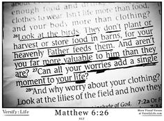 """""""Look at the birds of the air; they do not sow or reap or store away in barns,  yet your heavenly Father feeds them. Are you not much more valuable than they?"""" -Jesus (Matthew 6:26-27)"""