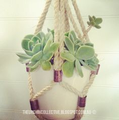 The Urchin Collective: DIY Plant Hanger
