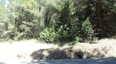 0 Snows, Camino, CA 95709 — Beautiful Piece Of Land With A Couple Of Great Building Sites. This Parcel Is in The Rancho Del Sol Subdivision With Ccr's. Water Meter Is At Site. Thanks For Showing.