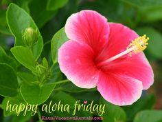 Happy Aloha Friday from Kauai Vacation Rentals located in Kauai!