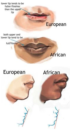 Artistic reference for depicting typical racial physical characteristics; Focusing on the appearance of the lips of European and African races - Artistic reference for depicting typical racial physical characteristics; Focusing on the appearanc - Drawing Techniques, Drawing Tips, Drawing Tutorials, Art Tutorials, Drawing Stuff, Drawing Reference Poses, Anatomy Reference, Art Reference, Digital Painting Tutorials