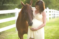 Beautiful horse maternity session!