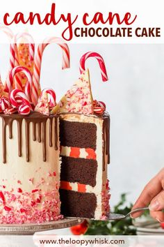 Candy Cane Cake (Gluten Free) - This might very well be the ultimate Christmas c. Holiday Baking, Christmas Desserts, Christmas Treats, Christmas Baking, Christmas Recipes, Christmas Cakes, Christmas Goodies, Chocolate Drip Cake, Gluten Free Chocolate Cake