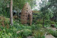 The Gold Medal gardens at Chelsea Flower Show 2021 have been announced Amazing Gardens, Beautiful Gardens, Welcome To Yorkshire, Indoor Watering Can, Chelsea Flower Show, Eco Garden, Floating Plants, Garden Show, Foliage Plants