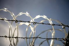 Barbed Wire Fence-Wire Mesh World Pty Co.,Ltd