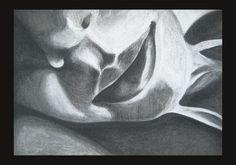 portrait charcoal on textured paper 70x50cm