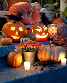 for the porch for Halloween next year (like the crow and various types/sizes of pumpkins + candles & mums) Days Until Halloween, Fete Halloween, Halloween Season, Holidays Halloween, Scary Halloween, Halloween Pumpkins, Happy Halloween, Halloween Decorations, Halloween 2013