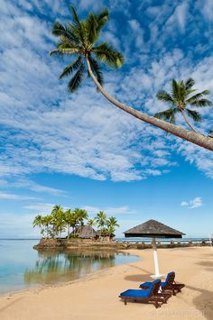 Beach, palm trees and Wicked Walu Restaurant at Warwick Fiji Resort & Spa, Coral Coast, Viti Levu Island, Fiji. Beautiful Places In The World, Beautiful Beaches, Dream Vacations, Vacation Spots, Places To Travel, Places To See, Phuket Thailand, Beach Resorts, Travel Inspiration