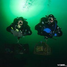 Divers removing #ghostfishing crab pots. . . . . . #underwaterphotography  #dykking  #diveplanet #dykkebazaar #coldwaterdiving #divinginnorway #ocean  #uwphoto #uwphotography #instadive #ikelite #ikelitehousing #nikond7000 #skudeneshavn  #scubaphoto #scubadiving #scuba #visitnorway #uwpics #igtravel #underwater #savetheocean #plastretur #rofos