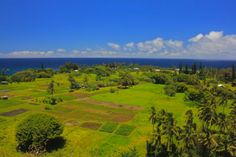 You can either stop on the Hana Highway lookout for a spectacular view of taro fields, an old Hawaiian village and the rugged lava coastline, or you can drive down to see this unique place up close. There is a stone church that dates from 1856 that is the only thing that survived the tsunami of 1946.