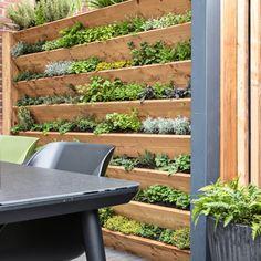 Back Gardens, Small Gardens, Indoor Garden, Outdoor Gardens, Small Balcony Design, Inside Garden, Hawaii Homes, Mediterranean Garden, Edible Garden