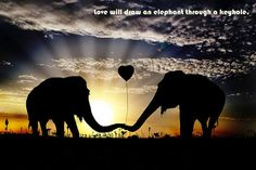 Valentines Day Images Pictures Love wallpapers Quotes | Happy Valentines Day Pictures