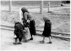 Children of the Holocaust
