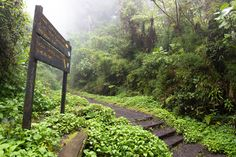 The Volcano Barva- a non touristic attraction Costa Rica, Crater Lake, Attraction, National Parks, Water, Plants, Blog, Volcanoes, Gripe Water