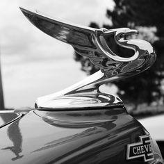 Chevrolet hood ornament