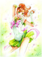 Sailor Jupiter Makoto by Naschi
