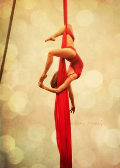 Aerialist, Circus Acrobat on Deep Red Silks - Without a Net - Acrobat, Gymnast Poses Upside Down in Silk Routine - 5x7 Fine Art Photography.