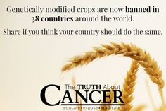 It is appalling that we are still exposed to genetically modified foods. WE are the ones who can change that by not buying them. Do you agree?
