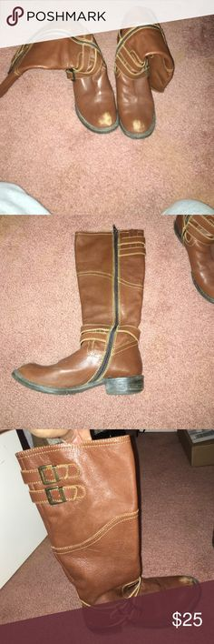 Steve Madden riding boots
