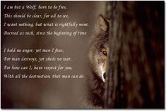 #wolf    #SPIRITHOODS #INNERANIMAL Wolf Love, Wolf Spirit, Lone Wolf, Wolves, Creatures, Wolfdog, Inspire, Animals, Heart