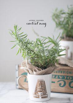 plantas em canecas. http://digaeba.com