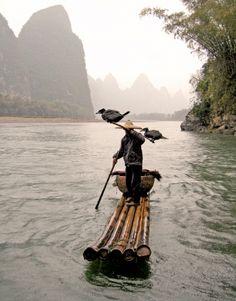 Cormorant fishing - Guilin, China