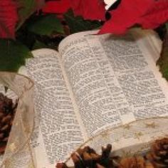 Scripture to read every day of December to prepare