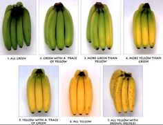 When Is The Right Time To Eat A Banana? - - - Green banana is not what we buy often. People look for banana which a bit ripe and have some brown spots on the. Banana Fruit, Green Banana, Health And Beauty, Health And Wellness, Banana Benefits, Eating Bananas, Colors