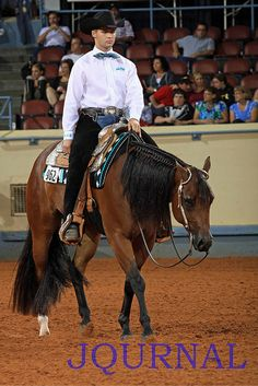 Is your horse show-ready? Check out these horse grooming tips for horse-showing success.