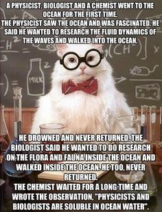 Chemistry Cat strikes again!
