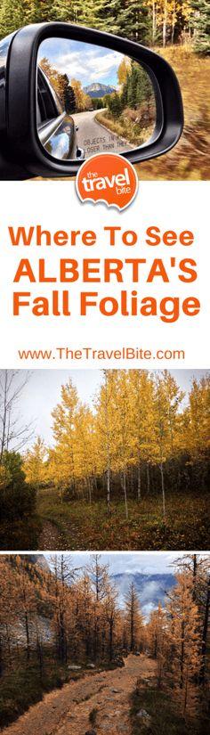 Where to see Alberta's Fall Foliage.