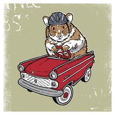 Hamster Guinea Pig Hot Rod Red Car Safety First Helmet Critter Silk Screened Poster Nursery Gift Baby Shower Christmas Present - Etsy.