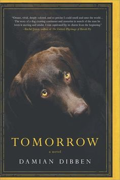 Historical Fiction 2018. Tomorrow by Damian Dibben. Tomorrow tells the story of a 217-year-old dog and his search for his lost master. His adventures take him through the London Frost Fair, the strange court of King Charles I, the wars of the Spanish succession, Versailles, the golden age of Amsterdam and to nineteenth-century Venice.