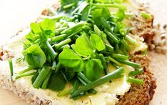 Watercress - Could this be the healthiest superfood of all the superfoods? Superfood, Healthy Homemade Snacks, Home Detox, Perennial Vegetables, Best Teeth Whitening, Processed Sugar, Unprocessed Food, Liver Detox, Fake Food