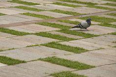 Plaza Victor J. Cuesta Reminds us of the Importance of Public Space Grass Carpet, Green Terrace, Passive House, Pavement, Landscape Architecture, Pergola, Outdoor Decor, Cuenca Ecuador, Public Spaces
