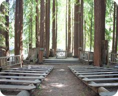 Pic 2 of 2: Camp Campbell YMCA in Boulder Creek, CA (w/out the Wedding Party)  http://www.ymcasv.org/ymcacampcampbell/html/groups_weddings.html
