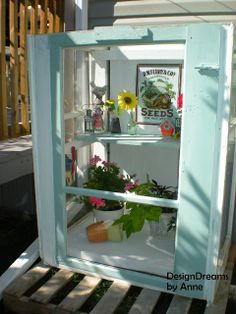 Mini Greenhouse from Old Storm Windows - & plywood, venting in back panel. Door & 2 sides are storm windows. Roof is a piece of glass, still searching for windows to make a pitched roof.