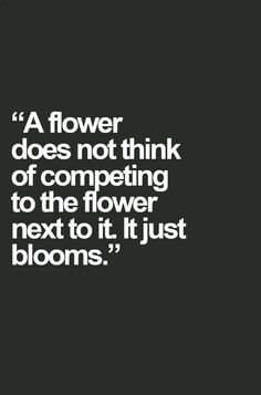 Happiness begins where comparison ends. A flower does not think of competing to the flower next to it, it just blooms.