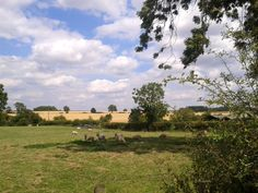 Beeby, Leicestershire, England, 08/08/15