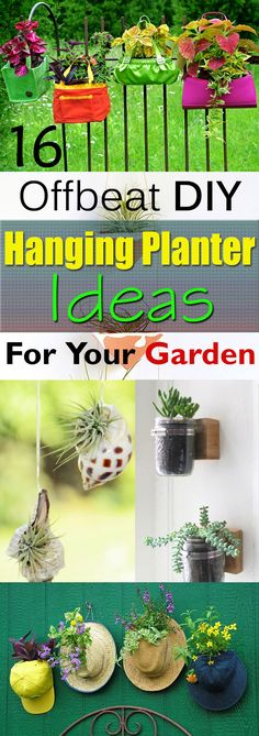 16 Offbeat DIY Hanging Planter Ideas If you're looking for some OFFBEAT ideas for growing plants ind Diy Planter Box, Diy Planters, Planter Ideas, Hanging Planters Outdoor, Hanging Plants, Hanging Baskets, Growing Plants Indoors, Gardening Magazines, Planting Vegetables