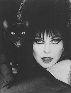 Cassandra Peterson, actriz y preaentadora de programas de terror como Elvira the mistress of the dark Cassandra Peterson, Dark Side, Celebrities With Cats, Celebs, Tv Movie, Animal Gato, Bd Comics, Cat People, Dark Beauty