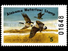 1981 Canada Geese ​Artist: Jack Deloney Alabama Waterfowl Stamp