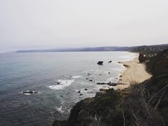 Looking down onto one of many secluded beaches along the Great Ocean Road and watching the fog roll in.  #beach #greatoceanroad #roadtrip #aireysinlet  #victoria #visitvictoria #visitgreatoceanroad #cliff #ocean #photography #nature #olympusinspired #olympusomdem10 #travel #explore #wanderlust #australia #travellingjess by travelling_jess http://ift.tt/1PI0pio