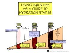 Using Hgb and Hct as a Guide to Hydration Status Both the hemoglobin and the hematocrit are based on whole blood and are therefore dependent on plasma volume. If a patient is severely dehydrated, the hemoglobin and hematocrit will appear higher than if the patient were normovolemic; if the patient is fluid overloaded, they will be lower than their actual level.
