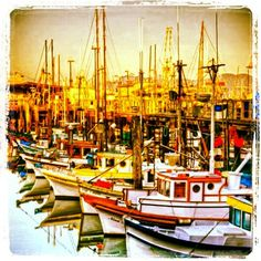 Fisherman's Wharf, San FrSave 90% Travel over Expedia.  Save thousands over Expedias advertised BEST price!! https://hoverson.infusionsoft.com/go/grnret/joeblaze/